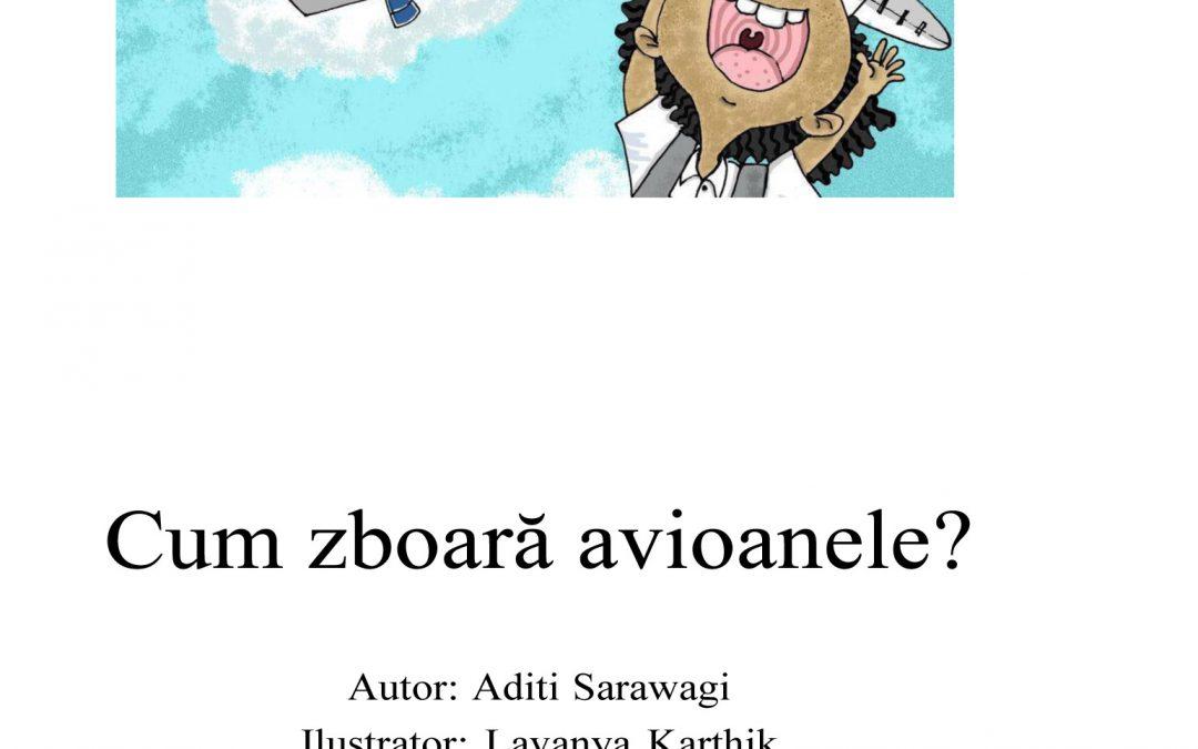 Cum zboară avioanele?